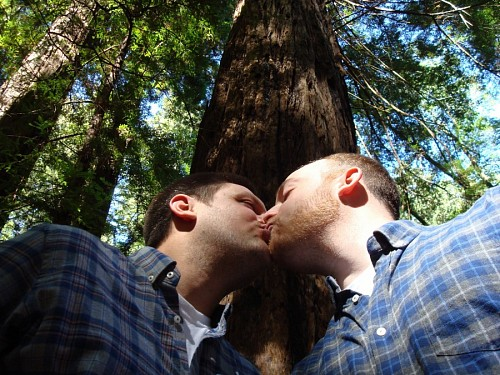 Photos of gay men kissing under the tree