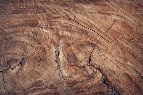 Wallpaper Wood surface