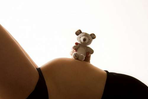 free images  Pregnant woman with teddy bear