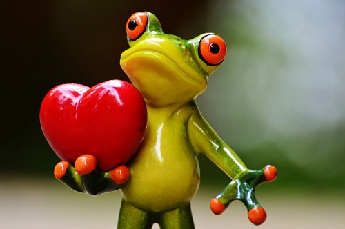 Love images wallpaper hd Toad in love