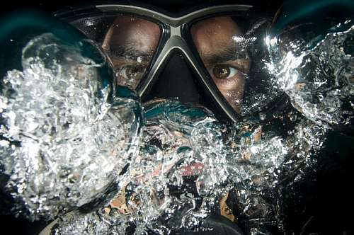 free images  Diver