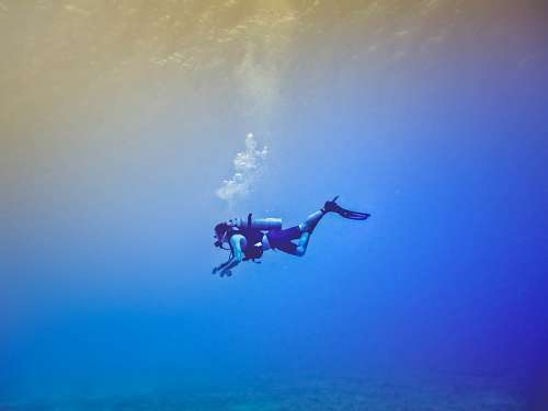A person diving in blue sea