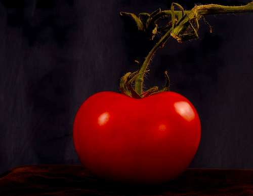 free images  Red tomato
