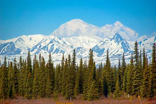 free images  Snowy Mountains