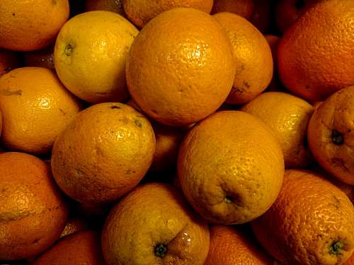 free images  Orange fruit