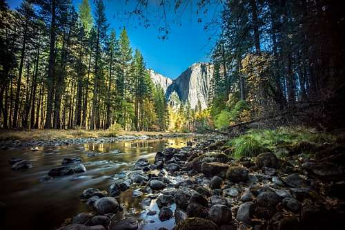 free images  yosemite park USA