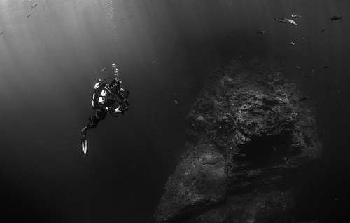 Man diving in black and white