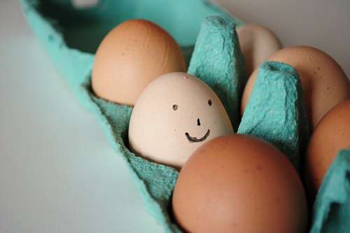 free images  joy, happiness, face, smile, egg, eggs, concept, f
