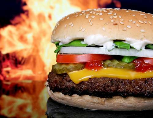 free images  Cheese burger