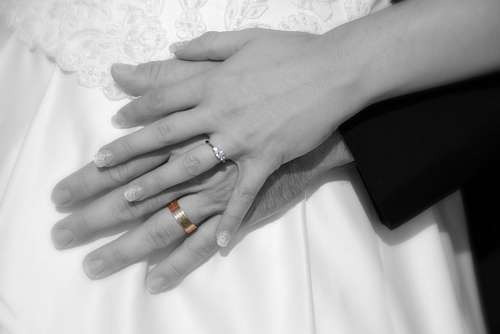 free images  Hands of newlyweds with their new alliances
