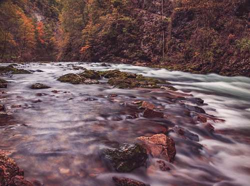 free images  Mountain River