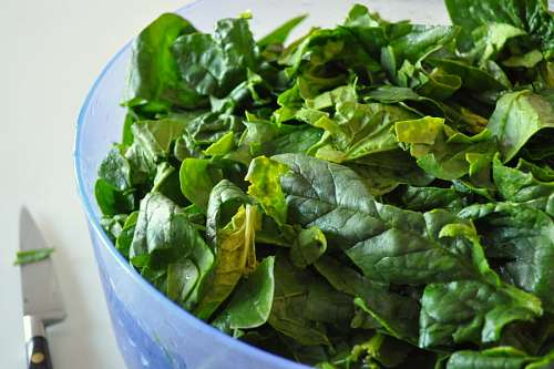 free images  salad bowl, interior, green spinach, healthy, ligh