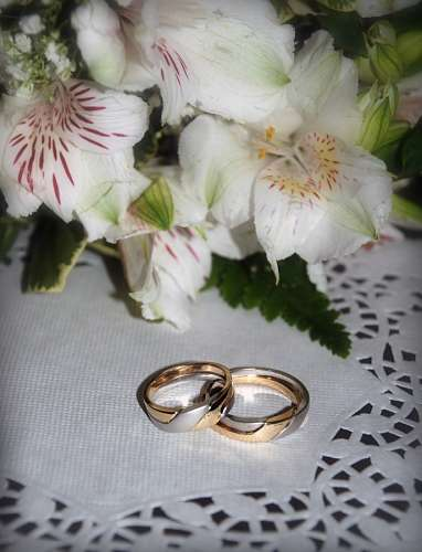 free images  Gold and Silver Engagement Rings