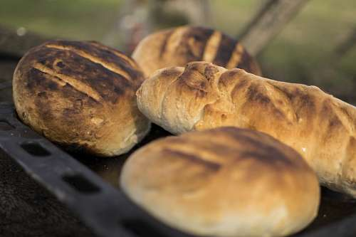 free images  Country bread