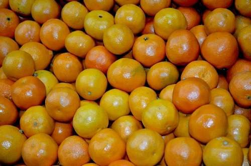 orange, oranges, fruit, front view, background, fr