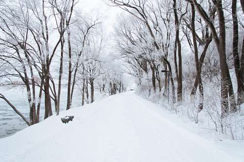 free images  Winter Landscape