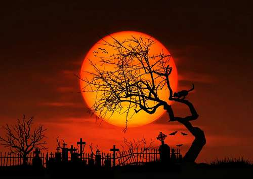 free images  Cementery