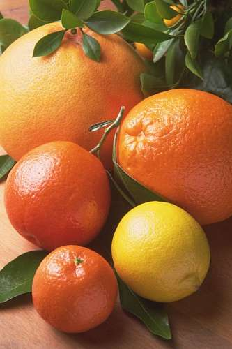 free images  Citric