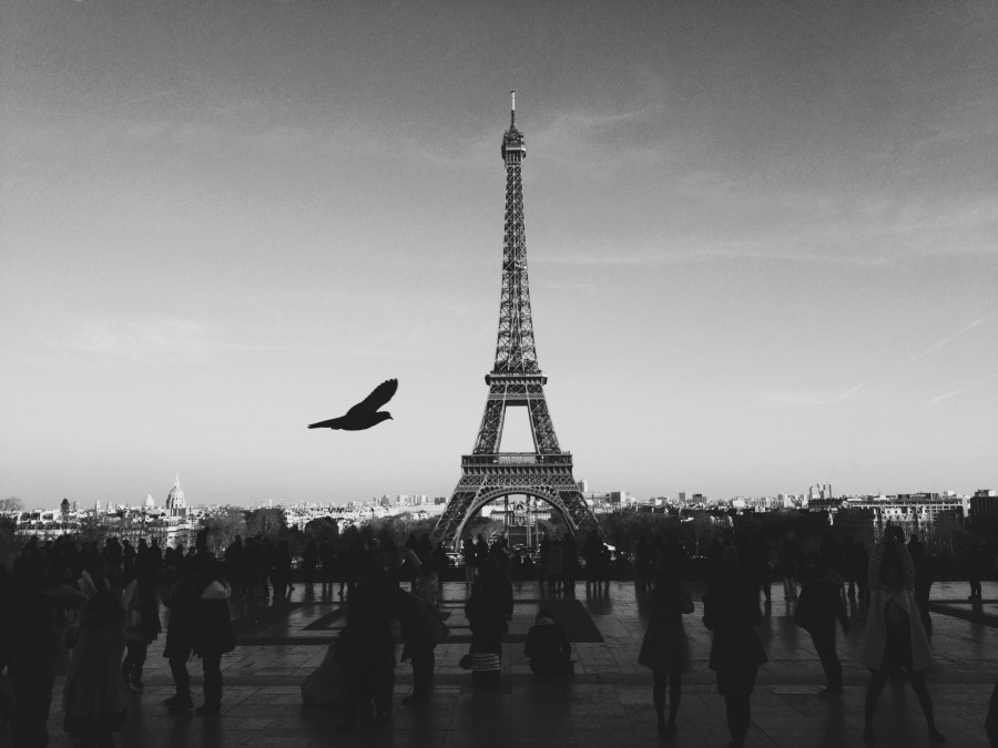 france, europe, monument, city, capital, paris, tower, eiffel, black and white,