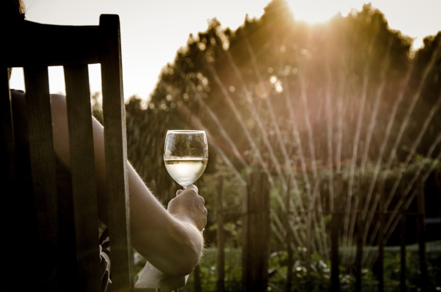 man, drink, wine, sunset, exterior, garden, irrigation, water, relax, drink, water, chair, one person, people, sitting, nature, tranquility, drink, home,