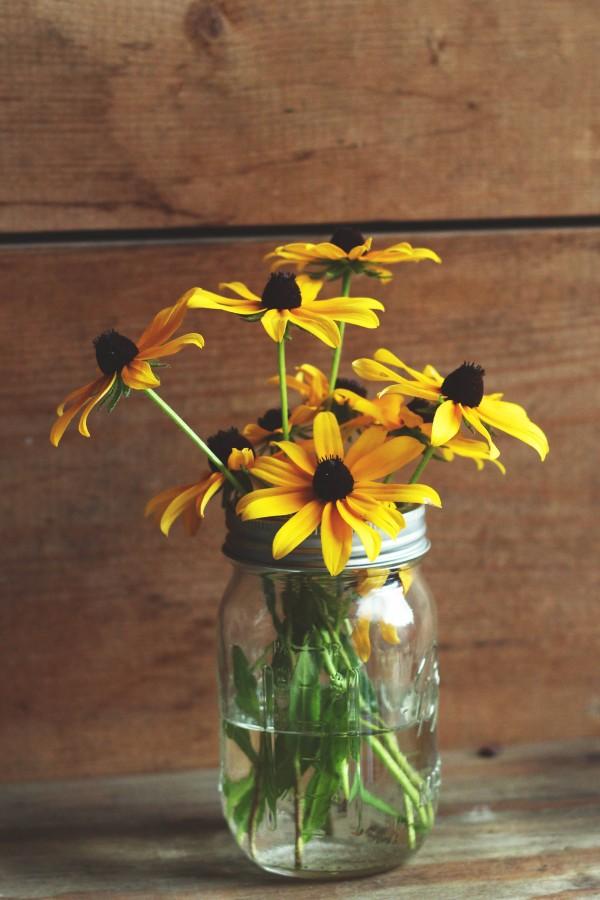 vase, flower, flowers, daisy, yellow, yellow, glass, decoration, spring,