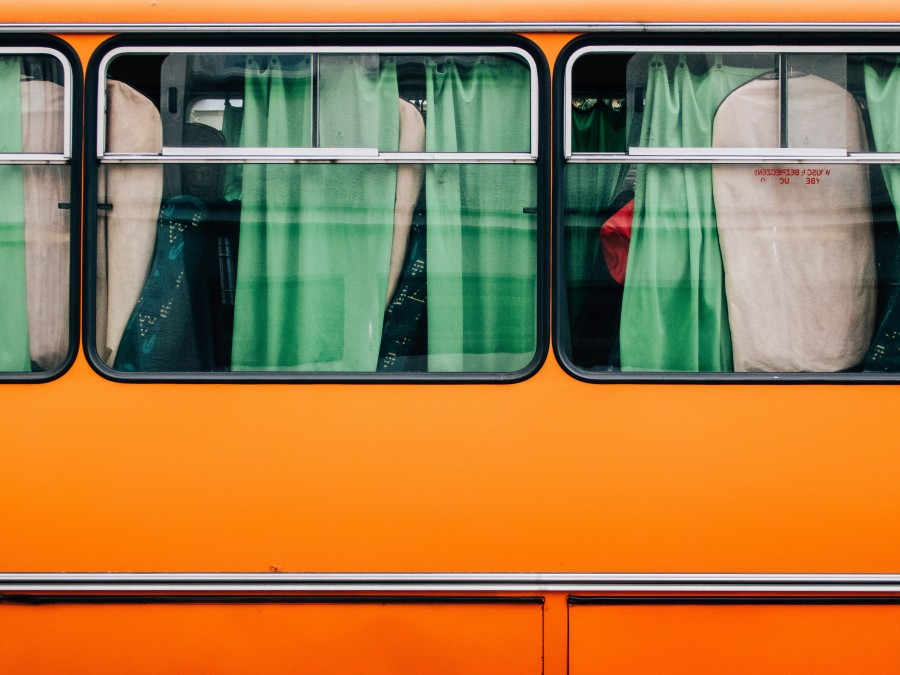 bus, bus, yellow, window, vehicle, transportation, front view, window,