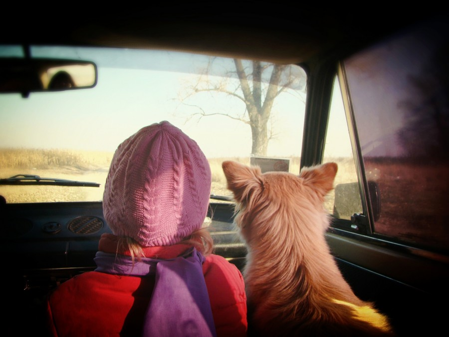 baby, girl, dog, old, machine, friendship, road, warm, cold, travel, ride, route, friends, pet, animal, auto, interior, girl, business, animal love