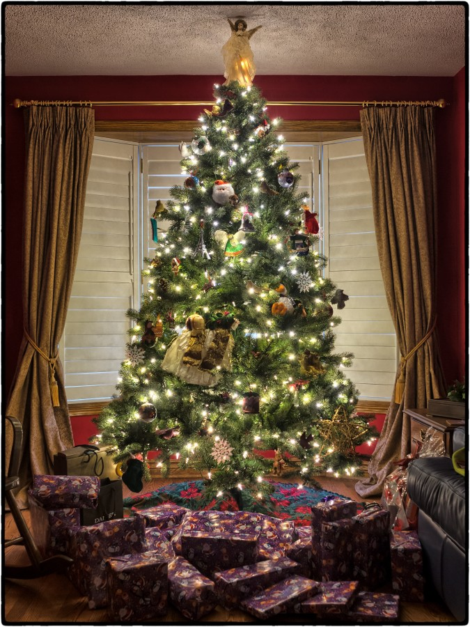Christmas tree, Christmas, interior, lit, tree, Christmas lights,