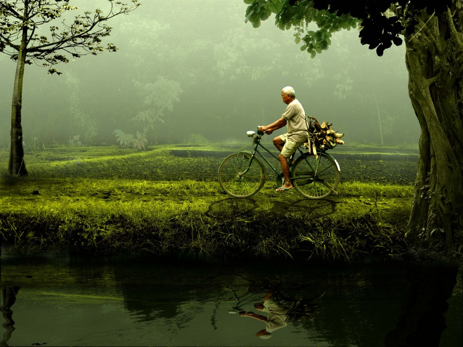 man, bicycle, adult, 50 years old, bicycle, activity, transportation, nature, day, walk, vietnam, asia, asian, green, forest, walking, movement,