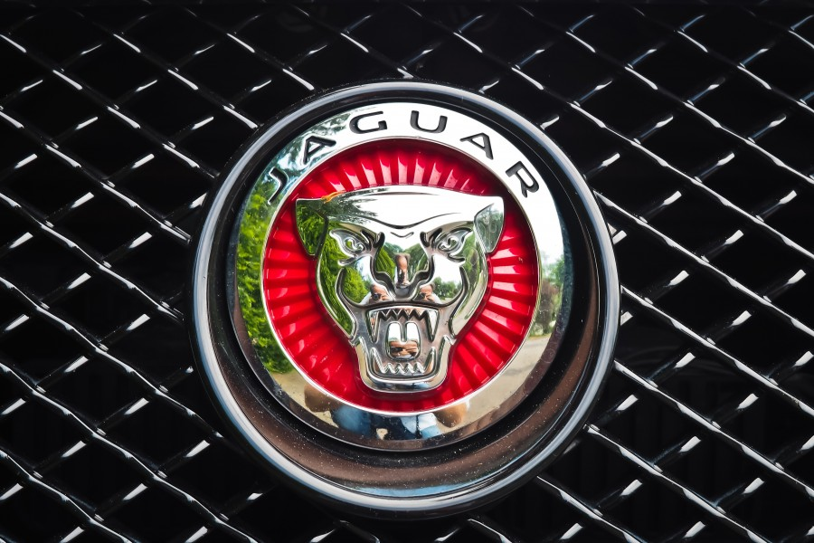 logo, insignia, jaguar, auto, sports, close-up, silver, luxury, symbol, brand,
