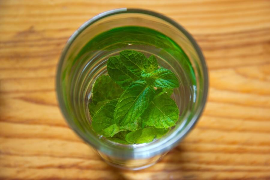 Tea, mint, natural, leaf, leaves, drink, hot, glass jar,