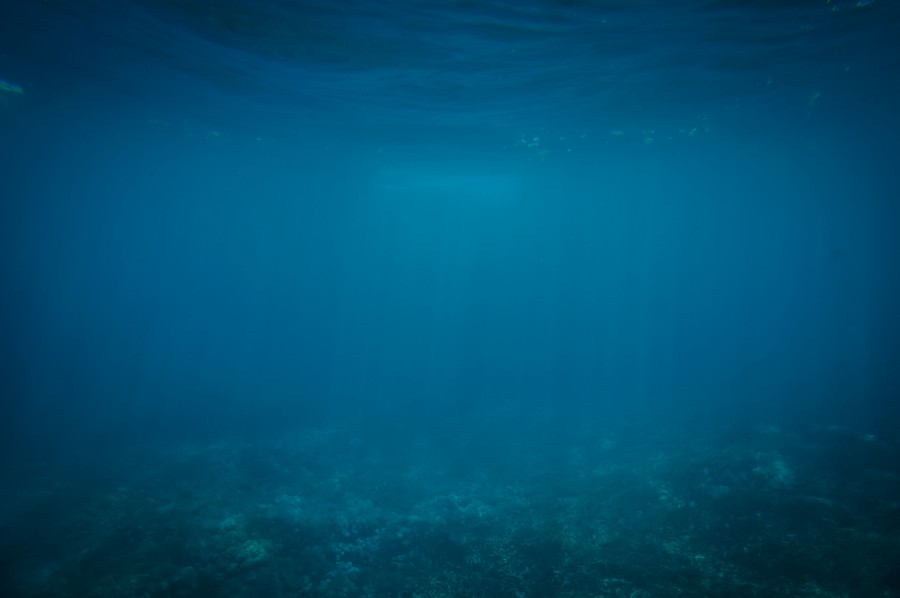 Image Of Bottom Of The Sea Free Images