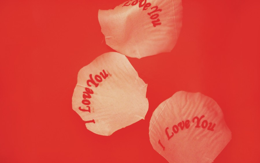 love, concept, red, background,