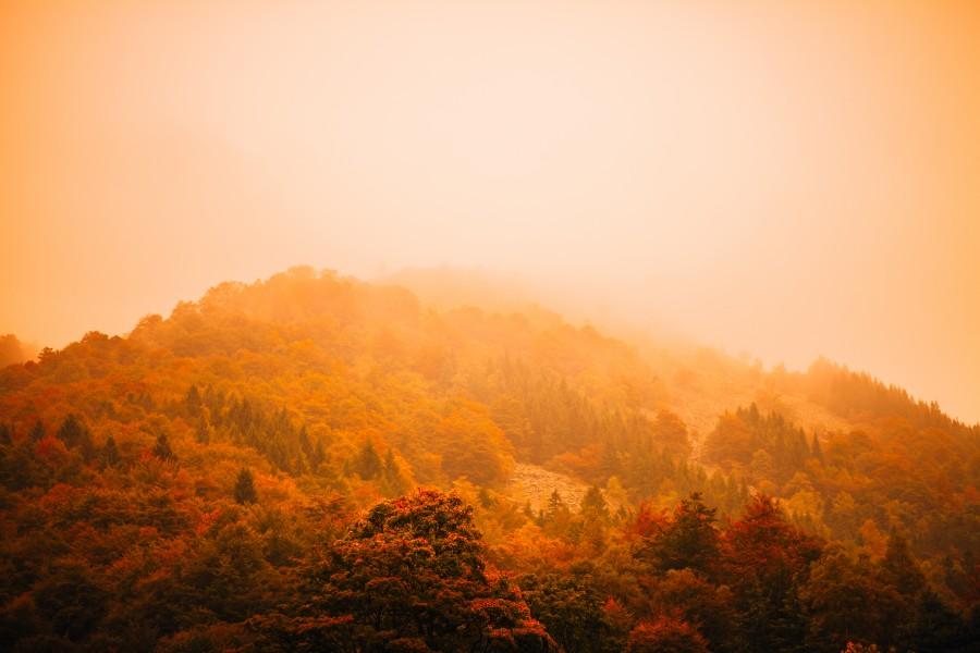 mountain, landscape, sunset, summer,
