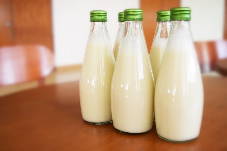 milk, bottle, bottles, drink, dairy, dairy products,