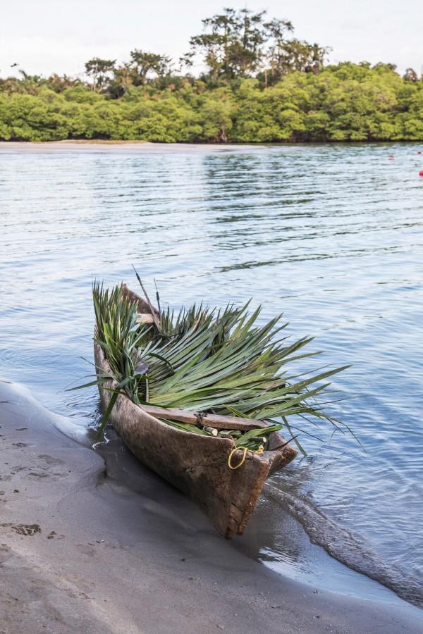 panama, island, beach, tropical, coast, canoe, boat, palm tree, nobody, transportation, river, beach, vacation, palm leaves,