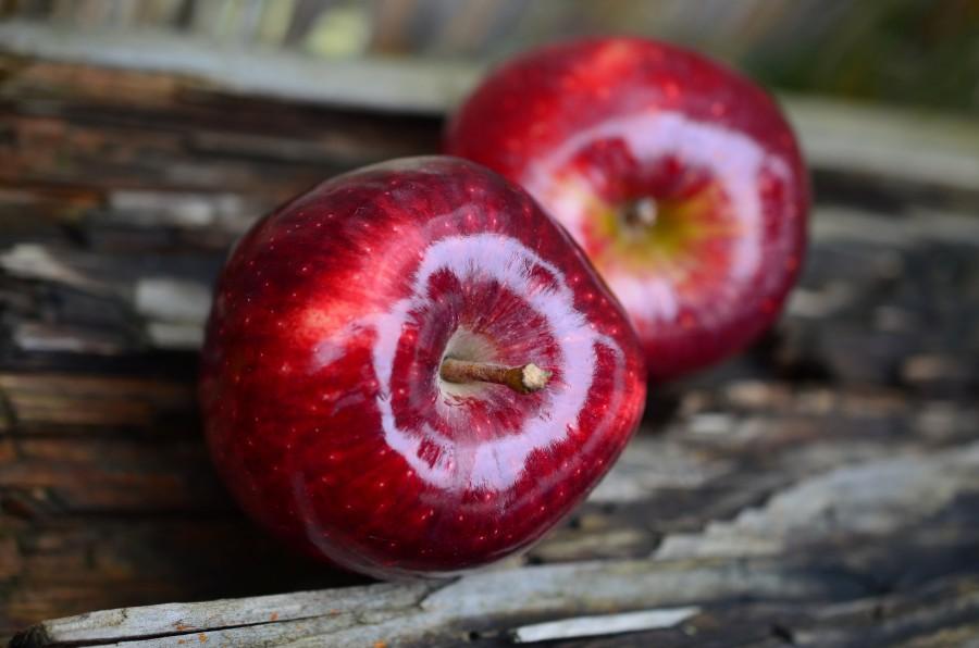 apple, apples, red, two, fruit, fresh,
