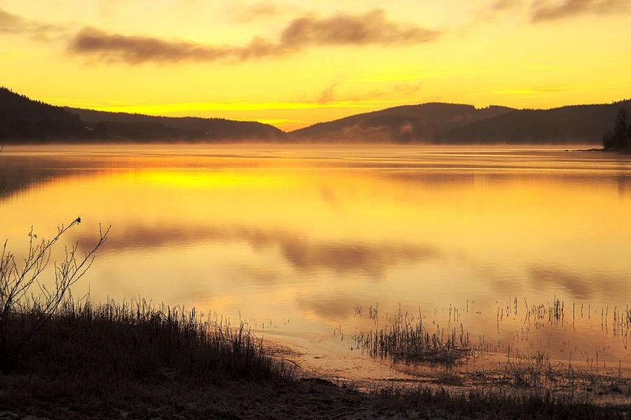 fog, haze, lake, sunset, dawn, germany, europe, day, landscape, Schluch,