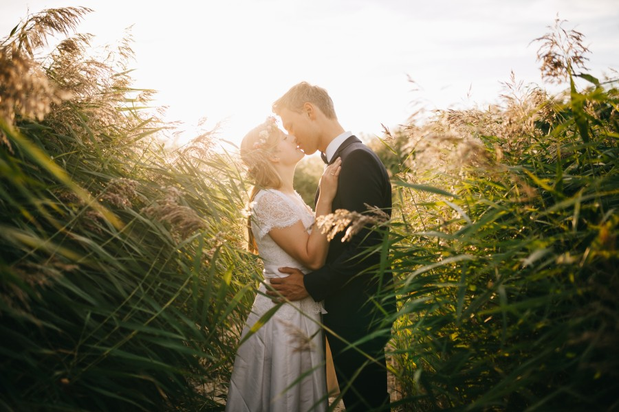 Bride, couple, grass, boyfriend, kisses, love, marriage, people, wedding, woman, free photo, free pictures, field, nature, outdoors