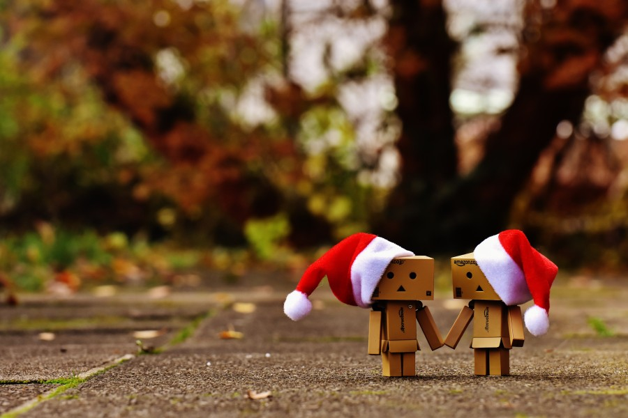 danbo, christmas, figure, together, in hand, love, love, union, for two people, funny, figures, friendship, valentine, connectivity, sweet, santa hat, christmas, fir, snow, cute, advent, contemplative, contemplation, festival, banner, gifts, send packages made
