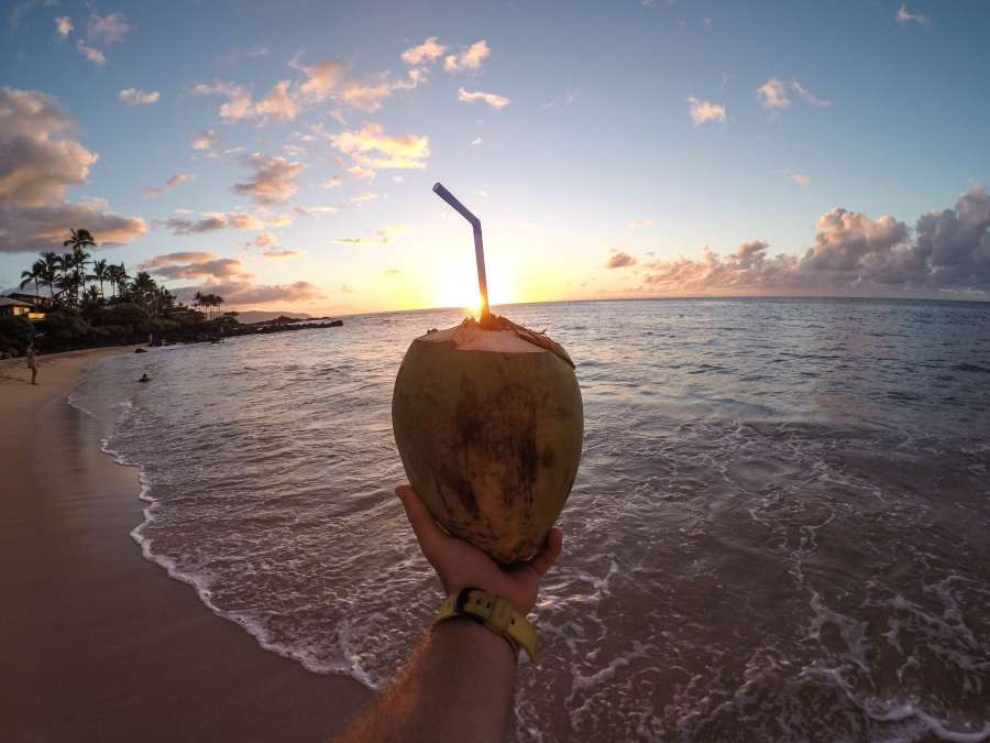 summer, vacation, coconut, hand, drink, cocktail, hold, tropical, beach, sunset, landscape, one person, man, sorbet