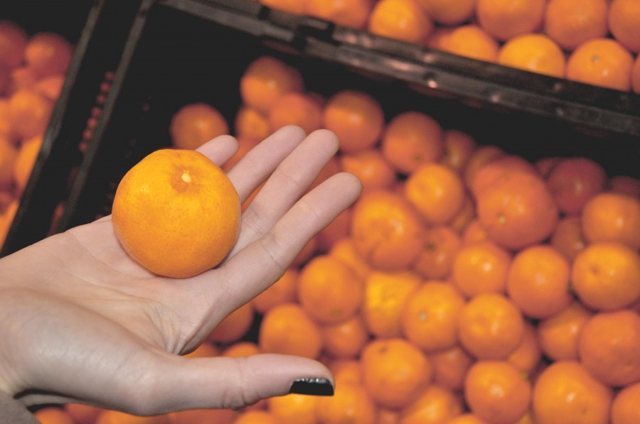 woman, hand, verduleria, interior, orange, oranges, fruit, health, healthy, food, show, showing, hold, product, trade, greengrocery