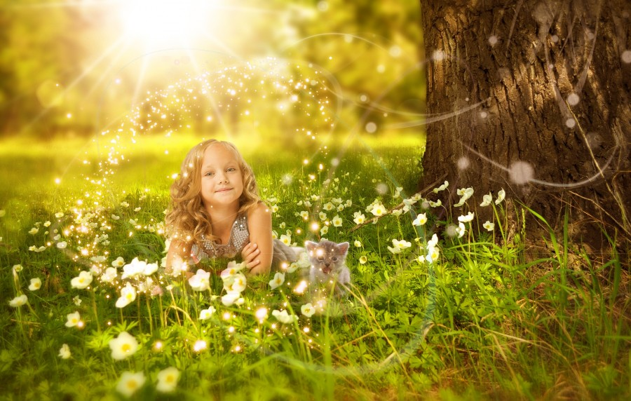 Girls, cat, tree, sunshine, light, prairies, flower, flash, green, beautiful, cool, children, Kitten, cat baby, young animals, aggressive, hunt, cat, Skins, lovely, animals, carnivores, cute, fluffy, Hair, baby, mammal, paw, pets, playful, portrait, Thoroughbred, curious, wanted, free photos, Free images, domestic cat, animal head, portrait, Domestic Cat, Cute, Kitten, Animal, Photography, Looking At Camera, Domestic Animals, Young Animal, Color, Day, Horizontal, Indoors, Pets, No People, Animal Eye, Animal Body Part, Animal Themes, An animal, adorable, cute, pet, furry, mane, Colors, hairs, stripes, feline, pussycat, micifuz, michino, madrileño, felido, gatuno, Hd wallpapers, 4k wallpapers, 4k resolution, screensaver