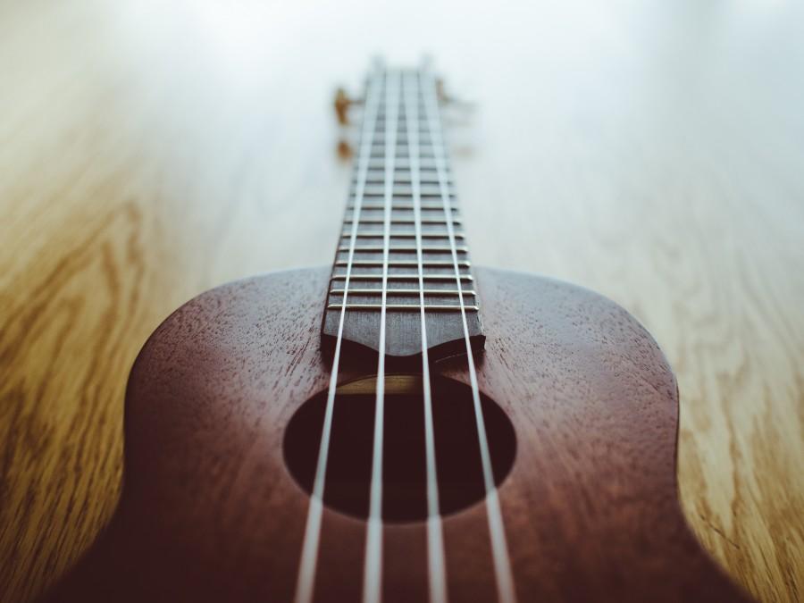 ukulele, music, instrument, objects,