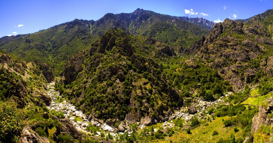 Corsica, france, nature, river, landscape, mountain, grass, rest, water, free photos, free pictures