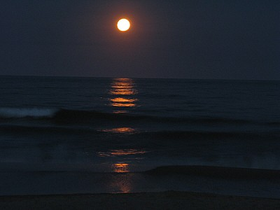 free images  sky, night, moon, full moon, front view, nature, d