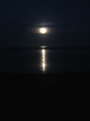 sky, night, moon, full moon, front view, nature, d