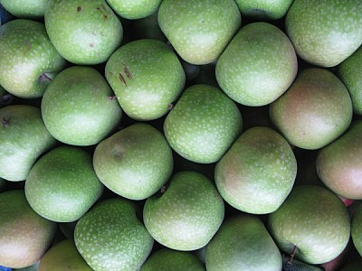 free images  fruit, fruits, apple, apples, front view, green, g