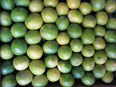 free images  fruit, fruits, lemon, lemons, front view, green, g