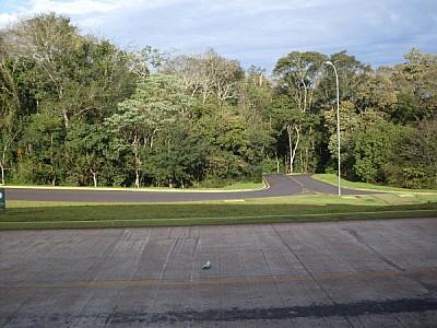 free images  route, routes, road, roads, asphalt, flat, jungle,